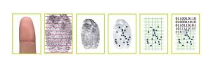 Dall'impronta digitale al codice binario