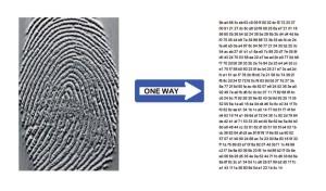 A sinistra: materiale di partenza, immagine del dito 80.000 byte - a destra il risultato template cifrato 500 byte